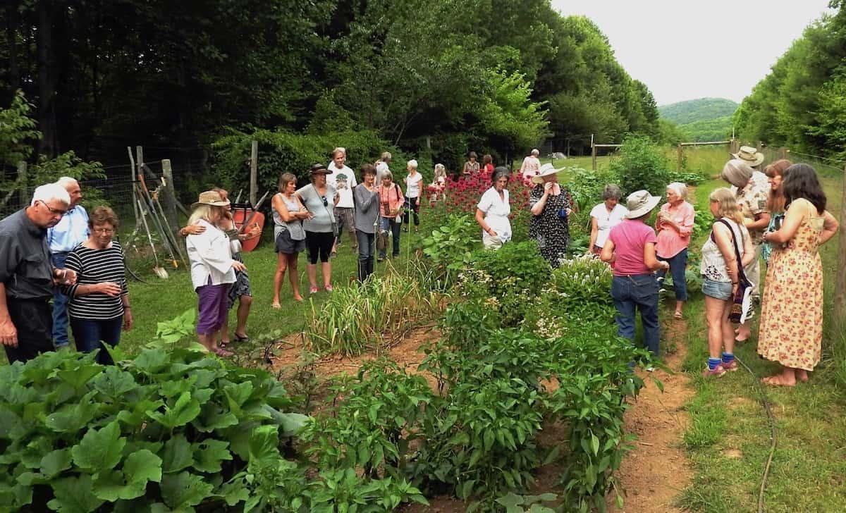 Wild garden club photo